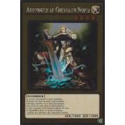 NKRT-FR003 Artorigus le Chevalier Noble Platinum Rare