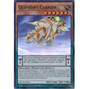NECH-EN022 Qliphort Carrier Super Rare