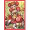 Protèges cartes Cardfight Vanguard G Vol.139 Maiden of Ranunculus Asha