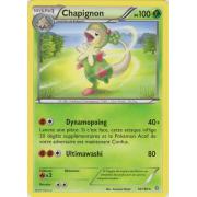 XY5_16/160 Chapignon Rare