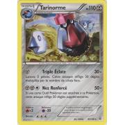 XY5_95/160 Tarinorme Rare