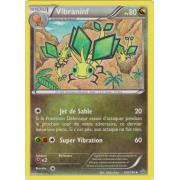 XY5_109/160 Vibraninf Peu commune