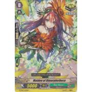 G-TD03/015EN Maiden of Dimorphotheca Commune (C)