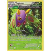 XY6_8/108 Papinox Rare