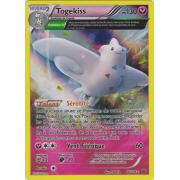 XY6_46/108 Togekiss Holo Rare