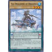 CROS-EN000 Sea Dragoons of Draconia Rare