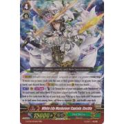 G-FC01/024EN White Lily Musketeer Captain, Cecilia Triple Rare (RRR)