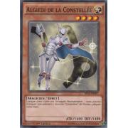 SP15-FR007 Algiedi de la Constellée Commune