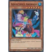 DRL2-FR041 Aquactrice Arowana Super Rare