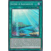 DRL2-FR042 Scène d'Aquarium Super Rare