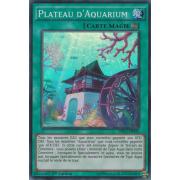 DRL2-FR043 Plateau d'Aquarium Super Rare