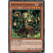 CORE-EN035 Aromage Cananga Commune