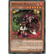 CORE-EN037 Aromage Bergamot Rare
