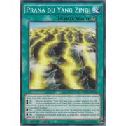 MP15-FR106 Prana du Yang Zing Commune