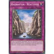 MP15-FR239 Raidraptor - Réactivité Commune