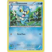 XY8_46/162 Grenousse Commune