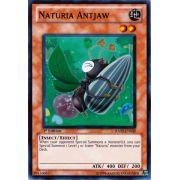 HA02-EN039 Naturia Antjaw Super Rare