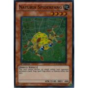 HA02-EN040 Naturia Spiderfang Super Rare