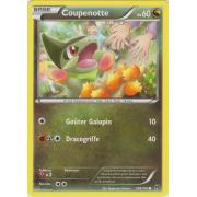 XY8_108/162 Coupenotte Commune