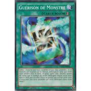 YGLD-FRB29 Guérison de Monstre Commune