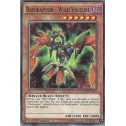 DOCS-EN013 Raidraptor - Wild Vulture Commune