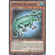 DOCS-EN033 Graydle Alligator Commune