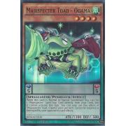 BOSH-EN030 Majespecter Toad - Ogama Super Rare