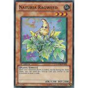 HA04-EN050 Naturia Ragweed Super Rare