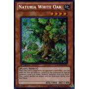 HA04-EN051 Naturia White Oak Secret Rare