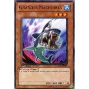 GENF-FR005 Grandes Mâchoires Rare