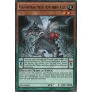SHVI-FR024 Gourmandise Amorphage Rare