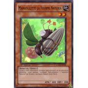 HA02-FR039 Margoulette la Fourmi Naturia Super Rare