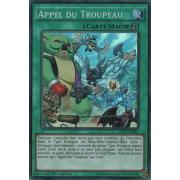 SHVI-FR081 Appel du Troupeau Super Rare