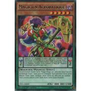 TDIL-FR009 Magicien Acrobatique Rare