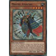 TDIL-FR029 Maître Triamid Rare