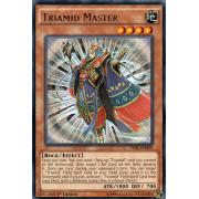 TDIL-EN029 Triamid Master Rare