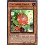 HA04-FR020 Coccinelle Naturia Super Rare