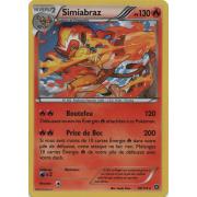 XY11_20/114 Simiabraz Holo Rare