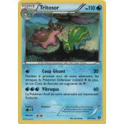 XY11_29/114 Tritosor Rare