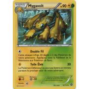 XY11_42/114 Mygavolt Rare