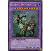 HA04-FR055 Exterio Naturia Secret Rare