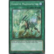 MP16-FR147 Tempête Majesspectre Commune