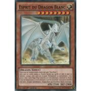 LDK2-FRK02 Esprit du Dragon Blanc Commune