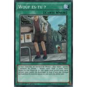 LDK2-FRK29 Woùf es-tu ? Commune