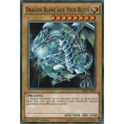 SDKS-FR009 Dragon Blanc Aux Yeux Bleus Commune