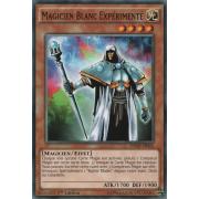 SDMY-FR022 Magicien Blanc Expérimenté Commune