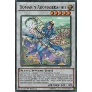INOV-FR047 Romarin Arômaséraphie Rare