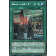 """INOV-FR063 Recombinaison Cellule """"A"""" Commune"""