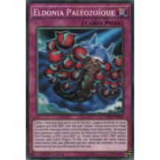 INOV-FR095 Eldonia Paléozoïque Commune