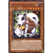STBL-FR034 Chien à La Chaine Rare